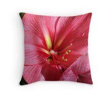 Mauve Amaryllis Throw Pillow