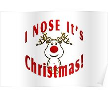 I Nose It's Christmas Poster