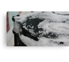 Freezing the bin collections. Canvas Print