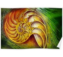 Nautilus Abstract Poster