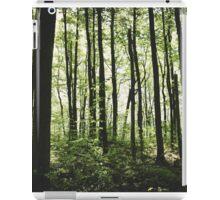 Stilts iPad Case/Skin
