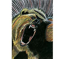 184 - RAW ENERGY (GRIZZLY BEAR) - DAVE EDWARDS - COLOURED PENCILS & GOUACHE - 2007 Photographic Print