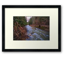 River Danger Framed Print