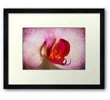 Pink textured orchid Framed Print