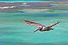 Pelican in Flight by Leon Heyns