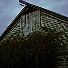 Barn at Fearrington by DBGuinn