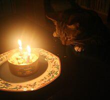 Kitty's Birthday by Jason Teeple