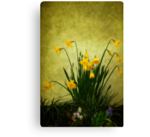 The Spring Collection Canvas Print