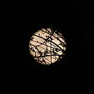 supermoon by maryevebramante