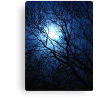 Blue Moon for Bev~ Canvas Print