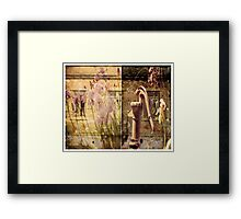 The Old Homeplace Framed Print