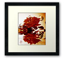 Reflection of Perfection Framed Print