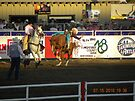 Bent Backwards Bronc Rider by Sandra Gray