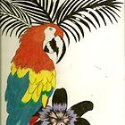Parrot Paradise by kellaybaybay