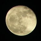 Super Moon 3-20-11 by Sharon Woerner