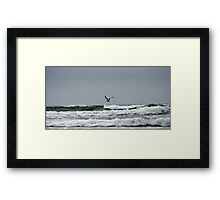 Beach and Seagull Framed Print