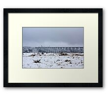 Lethbridge High Level Bridge Framed Print