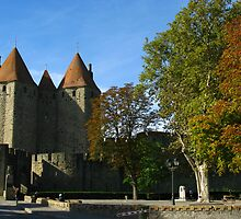 Carcassonne Castle by Marilyn Harris