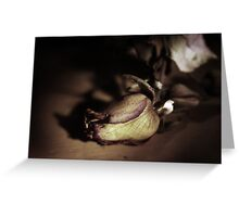 Kiss from a dying Rose Greeting Card