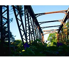 abandoned bridge Photographic Print