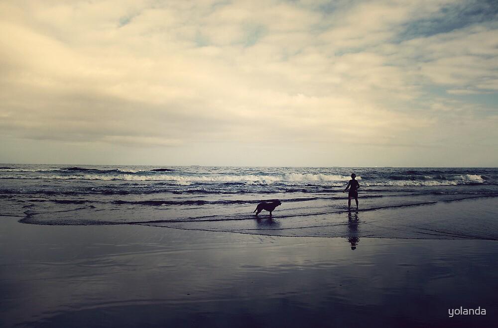 Doggie Beach Fun II by yolanda