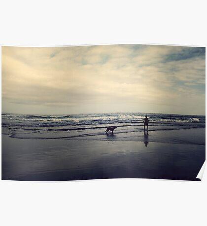 Doggie Beach Fun II Poster