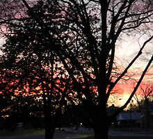 Sunset in my front yard by Mannabelles
