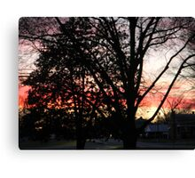 Sunset in my front yard Canvas Print