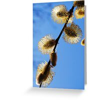 New Buds in Spring Greeting Card