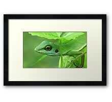Blend In Framed Print