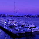 View by the Sea by Dawn di Donato