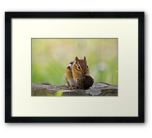 It's to big for me Framed Print