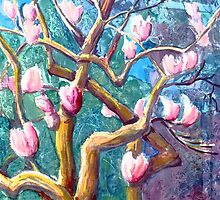 Magnolia Tree by Saga Sabin