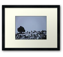 Heading for the High Country Framed Print