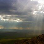 Sun Rays by ScottishVet