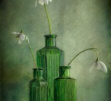 In The Green by Janet Walters