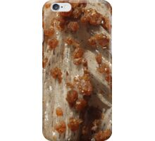 The Hidden Land - Boulder Hill iPhone Case/Skin