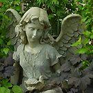 An angel in the garden by Marjorie Wallace