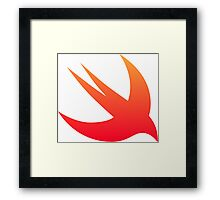 Swift bird Framed Print