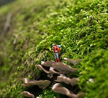 Tiny Adventurer by beanphoto
