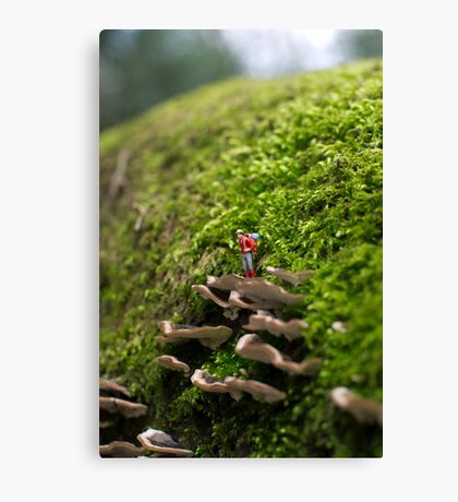 Tiny Adventurer Canvas Print
