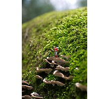 Tiny Adventurer Photographic Print