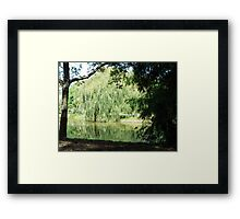 ~` Willow Lake `~ Framed Print