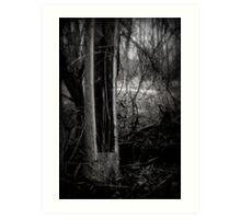 Split tree Art Print