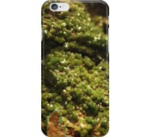 The Hidden Land - The Green Gully iPhone Case/Skin