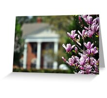Down South In Spring Greeting Card