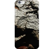 The Hidden Land - Summit On Red Mountain iPhone Case/Skin