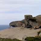 Remarkable Rocks    by Ellanita