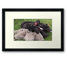 Mother and Babies 'Protection' Framed Print