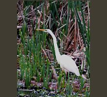 Just Waiting  Great Egret  Norfolk Island Unisex T-Shirt
